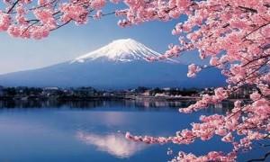 Langkah Dan Cara Membuat Visa Jepang